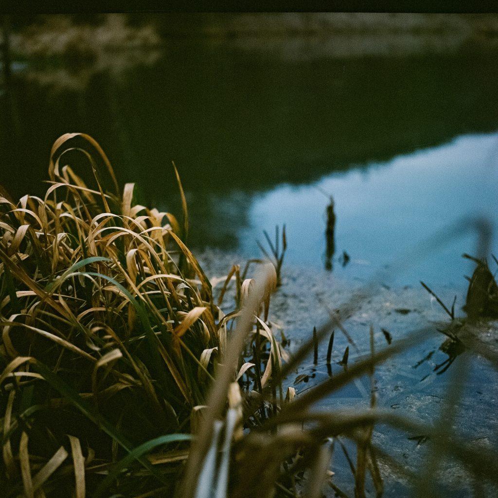 Foto vom See
